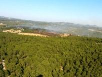 DALYAN - Çanakkale'de Orman Yangını Kontrol Altına Alındı