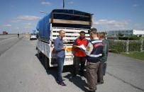 JANDARMA KARAKOLU - Kırklareli'de Kurbanlık Sevkiyatı Denetimleri