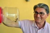 AMONYAK - Konya'da Etobur Örümcek 'Sarıkız' Tedirginliği