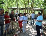 FATIH KıZıLTOPRAK - Kültür Ve Turizm Bakanlığı Ekibi Ergene'deki İncelemelerini Tamamladı