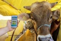 SMS - Sincan Belediyesi'nden Akıllı Telefonlara Kurban Uygulaması