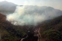ÇAMYUVA - Antalya'da Orman Yangını