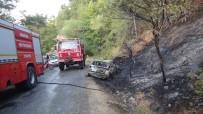 YENIÇAĞ - Araçta Başlayan Yangın Ormana Sıçradı