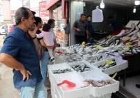 AV YASAĞI - Balıkçılar Yeni Sezondan Umutlu