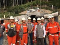 ÇORUH NEHRİ - Cerattepe Maden Sahasında Daraltma Başvurusu