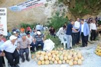 SEBZE ÜRETİMİ - Darende'de Kavun Festivali Yapıldı