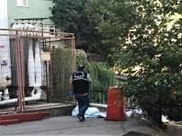 BURSA DEVLET HASTANESI - Taburcu edildiği hastanenin bahçesinde ölü bulundu