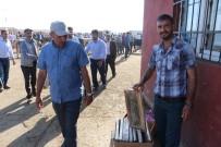 DUMANLı  - Ağrı'da Köyünde Ürettiği Balları Hayvan Pazarında Satıyor