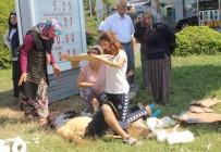 AZERI - Antalya'da Kontrolden Çıkan Otomobil Karşı Şeride Geçti Açıklaması 1 Ölü, 1'İ Ağır 3 Yaralı