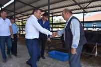 Başkan Avcu'dan Kurban Çağrısı