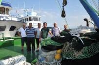 AV YASAĞI - Dereköylü Balıkçıların Umudu İstavrit