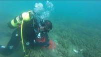 KURTARMA EKİBİ - İtfaiye Deniz Temizledi