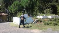 MEZARLIK ZİYARETİ - Kdz. Ereğli Belediyesi Mezarlıkları Bayrama Hazırladı