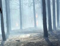 NOHUTLU - Malatya'da Orman Yangını