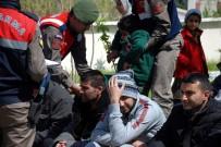 SOMALI - Aydın'da 10 Göçmen Yakalandı