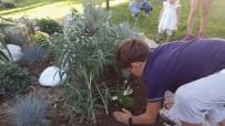 TÜRKIYE SAKATLAR DERNEĞI - Burhaniye'de Engelliler Çiçek Dikimine Öncülük Yaptı