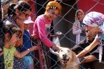 HAYVAN SEVGİSİ - Çocuklara Bakımevinde Hayvan Sevgisi Aşılanıyor