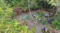 Kenevirleri Sulamak İçin Ormana Hortum Sistemi Çekmiş