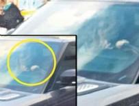 ÖZCAN DENİZ - Özcan Deniz otobüstekilere kızdı: Çekmeyin!