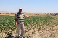 SENKRONIZASYON - Çiftçileri Sokağa Çağıran TZOB Başkanı'na Çiftçilerden Tokat Gibi Cevap Geldi