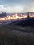 KÖY MUHTARI - Sandıklı'da Orman Yangını