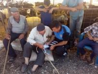 GAZI BULVARı - Antalya Polisi Bin 423 Kişiyle Yüz Yüze Görüşüp Uyardı