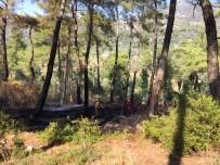 KARADERE - Dalaman'da Orman Yangını