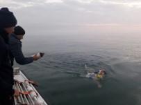 MANŞ DENIZI - Milli Yüzücü Emre Seven, Manş Denizi'ni Geçti