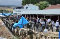 KURBAN PAZARI - Vatandaşlar Bozüyük Belediyesi Hayvan Pazarına Akın Etti