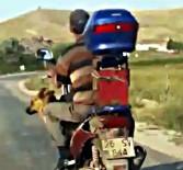 Motosiklette Köpek İle Tehlikeli Yolculuk