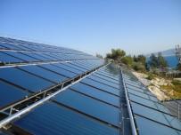 BERAT ALBAYRAK - Rüzgar İhalesi Dünyada Ses Getirdi