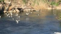 SU TÜKETİMİ - Su Kaynaklarımız Tehdit Altında