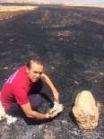 ANIZ YANGINI - Anız Yangınında Birçok Hayvan Telef Oldu