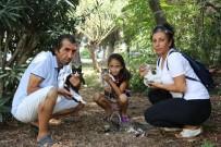HAYVAN HAKLARı - Antalya'da 'Kedi' Katliamı