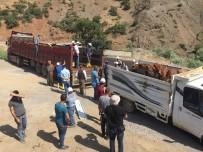 BEYTÜŞŞEBAP - Beytüşşebap'ta 25 Genç Çiftçinin Projesi Kabul Edildi