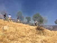 BEYTÜŞŞEBAP - Beytüşşebap'ta Çıkan Yangını Köylüler Kendi İmkanlarıyla Söndürdü