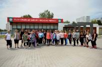 TÜRK MÜZİĞİ - Karşıyakalı 'Bilge Çınarlar'a Müjde