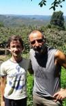 GÜRKAN UYGUN - 'Memati' Fındık Bahçesine Bakım Yapmak İçin Sakarya'da