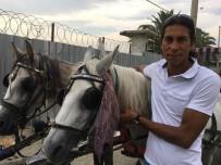 20 DAKİKA - Sıcaklarda Atlar 'Çok Koşturulmamalı Ve Dinlendirmeli' Uyarısı