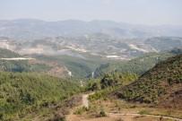 LAZKİYE - Suriye Sınırında Orman Yangını