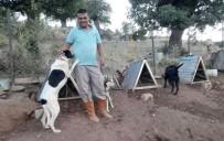 HAYVAN HAKLARı - Türkiye'ye Örnek Uygulama Açıklaması Gönüllü Hayvan Dostları Projesi
