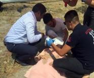 DÜĞÜN KONVOYU - Yaralılara İlk Müdahale CHP'li Vekillerden Geldi
