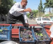 YAŞLI ADAM - 80 Yaşındaki Osman Dedenin Yetiştirdiği Organik Üzümlere Yoğun İlgi