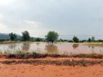 Aşırı Yağış Yolu Kapattı, Tütün Tarlalarını Vurdu
