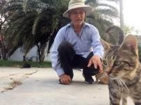 KıYAMET - Fatih'ten Kasımpaşa'ya Yürüyen Kedi Sever Filipinli