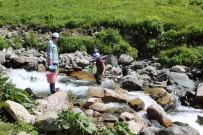 Trabzon'da 2017 Yılında Derelere 562 Bin Alabalık Salımı Gerçekleştirildi