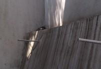 YAVRU KEDİ - Yavru Kedi İtfaiye Ekiplerince Kurtarıldı