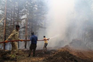 3 gündür güren yangın için halktan yardım istendi
