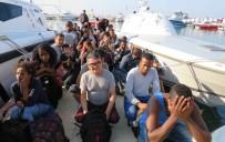 KAÇAK GÖÇMEN - Ayvacık'ta 51 Kaçak Göçmen Yakalandı