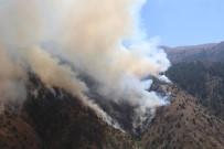 ÇARDAKLı - Erzurum'da Orman Yangını Açıklaması 20 Hektar Alan Kül Oldu